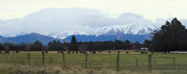 #5 Queenstown to Te Anau