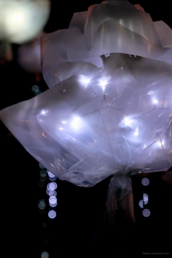 #3 Glow@Artweek