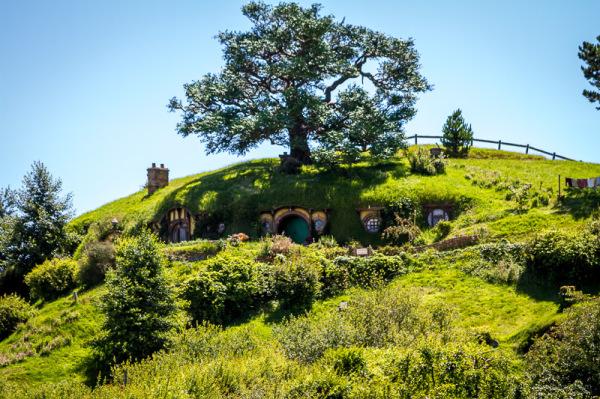 #1 Hobbiton Tour