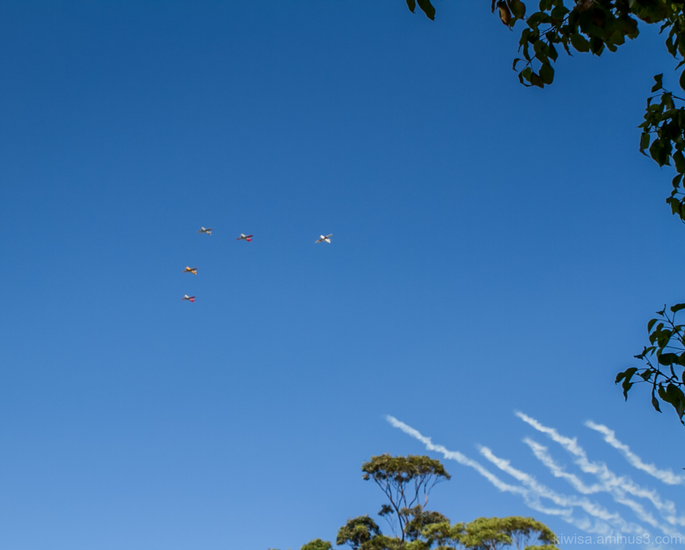 Anzac Day flypast