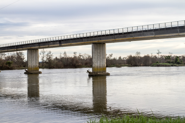 Glen Murray Bridge Waikato River