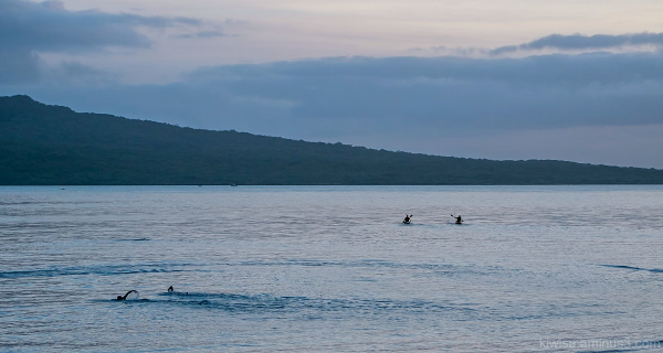 Two swimmers, two kayakers at dawn