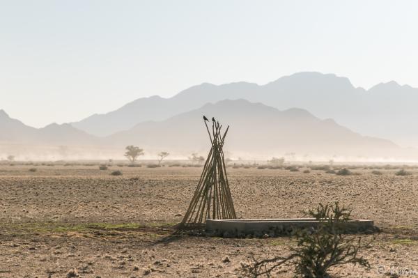 Desert Quiver Camp, Sossusvlei Namibia