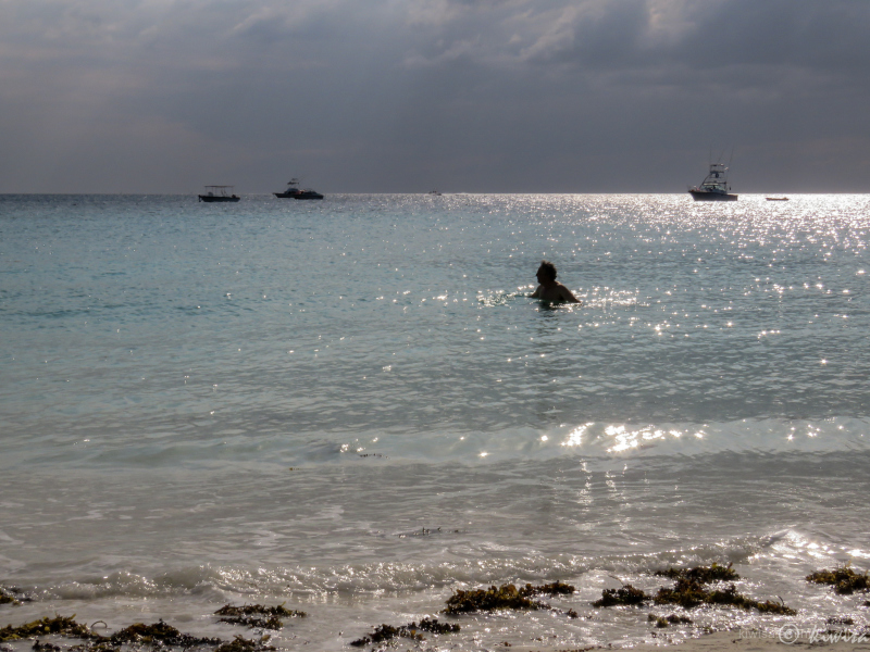 Late afternoon swim on a  Zanzibar beach