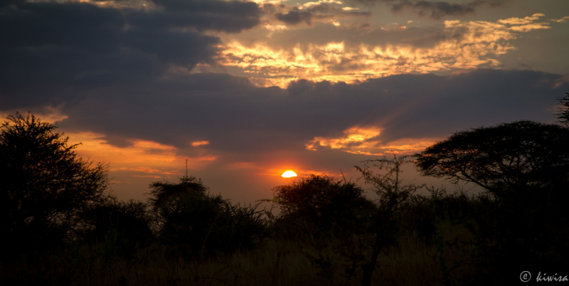 #22 Serengeti  - the end of day 2