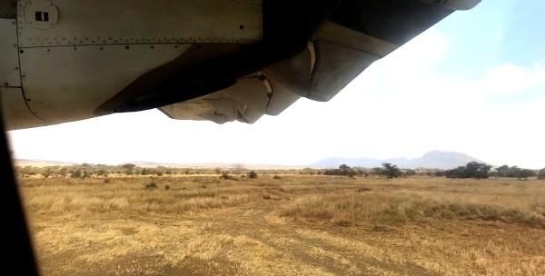 #44 - Tutaonana Serengeti
