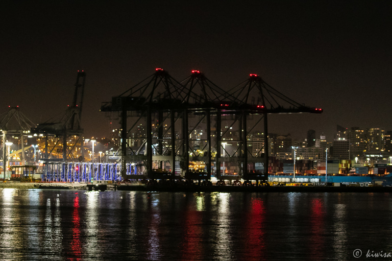 Giant cranes at night
