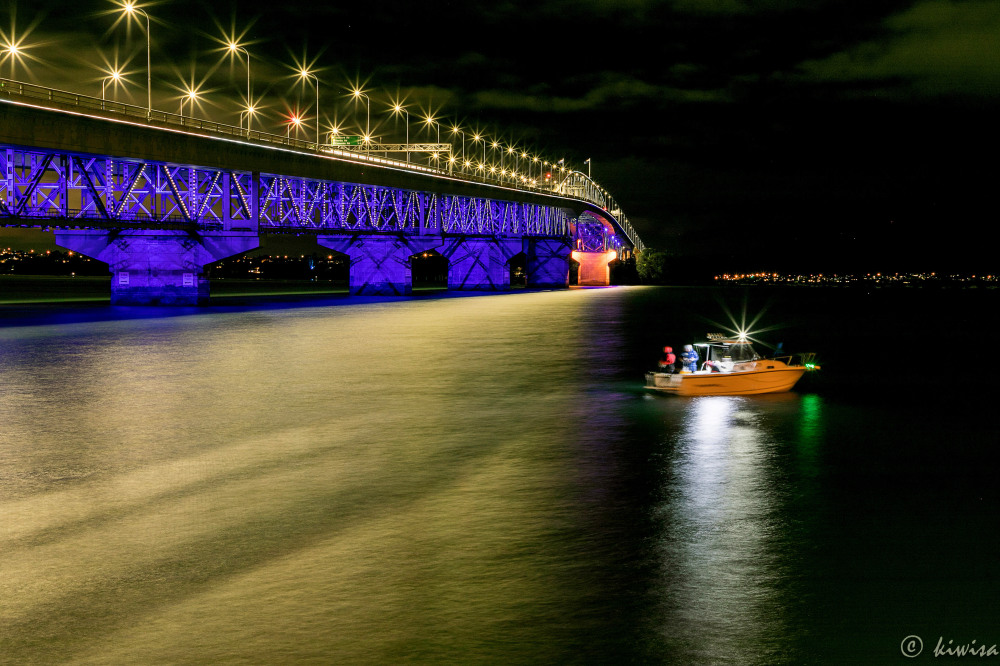 Auckland Harbour bridge at night