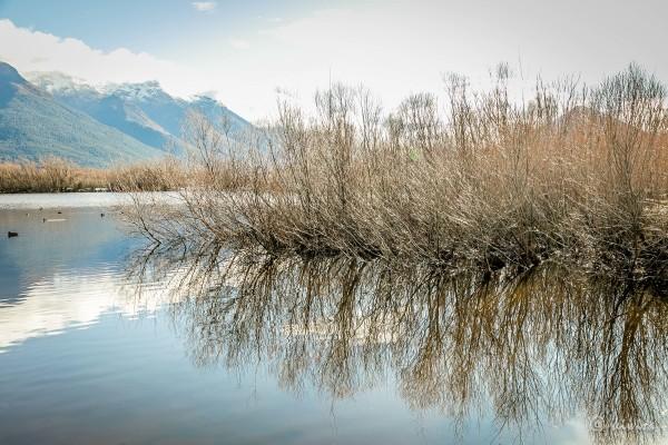#77 SI Road trip- Glenorchy Scenic lagoon walk