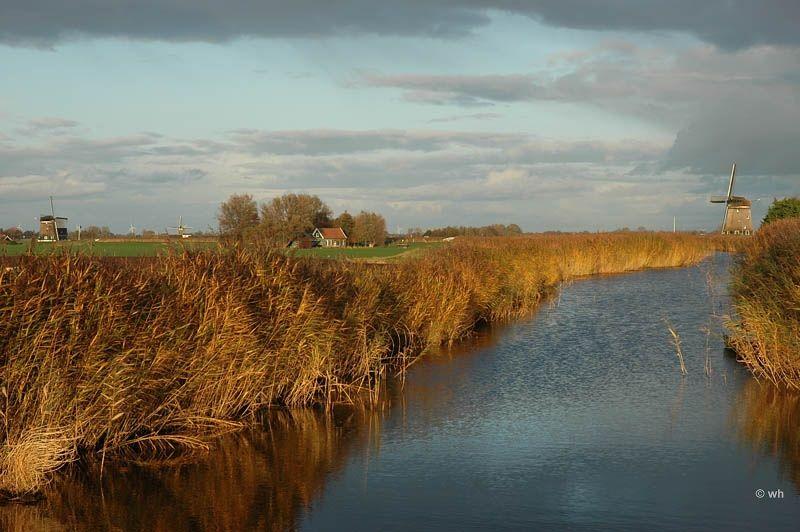 Berkmeer, Heerhugowaard (Noord-Holland)