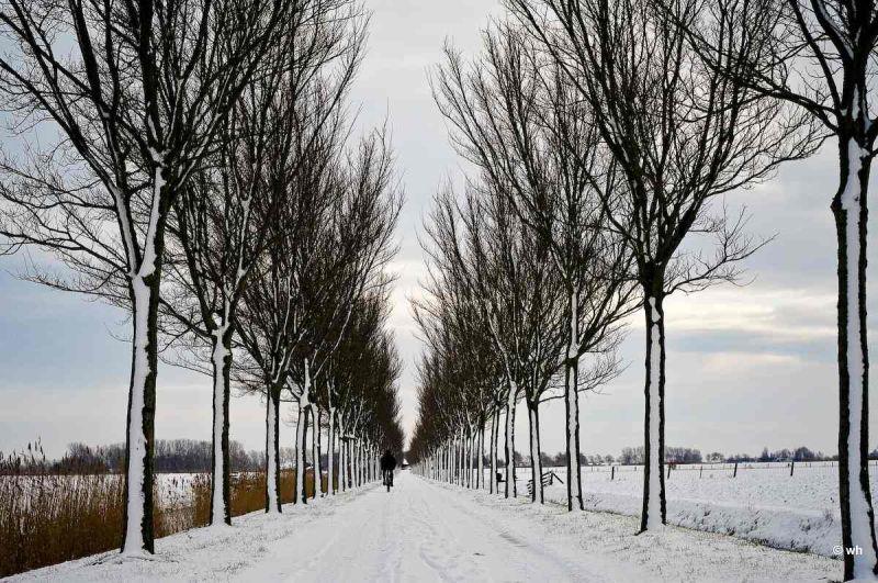 Waarland (Noord-Holland)