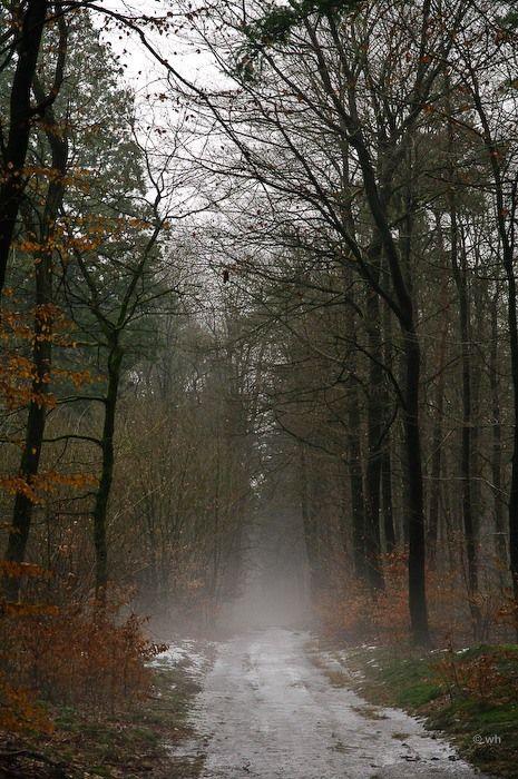 Beekbergen (Gelderland)