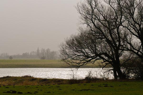 Driel (Gelderland)