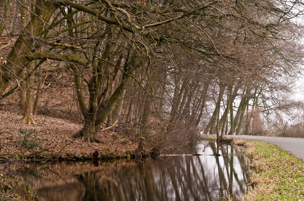 Heveadorp (Gelderland)