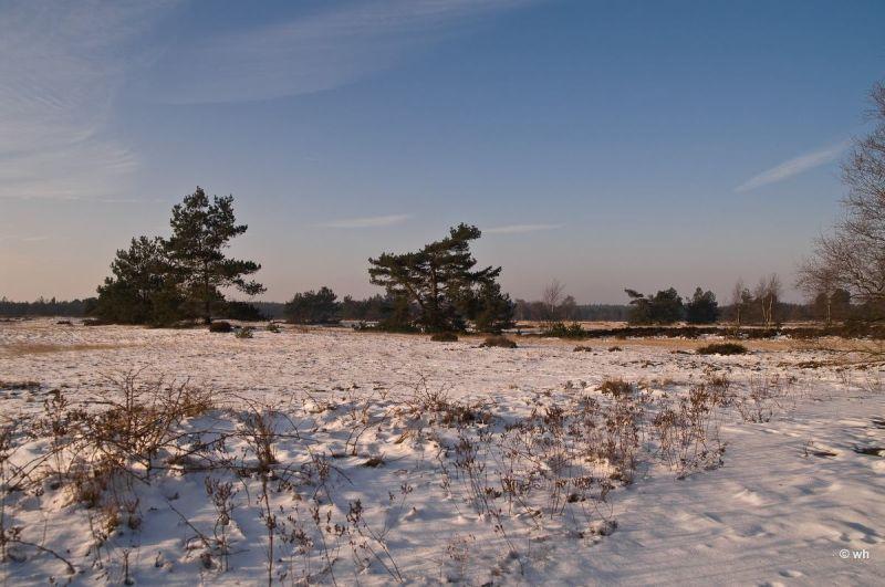 Kootwijkerzand (Gelderland)