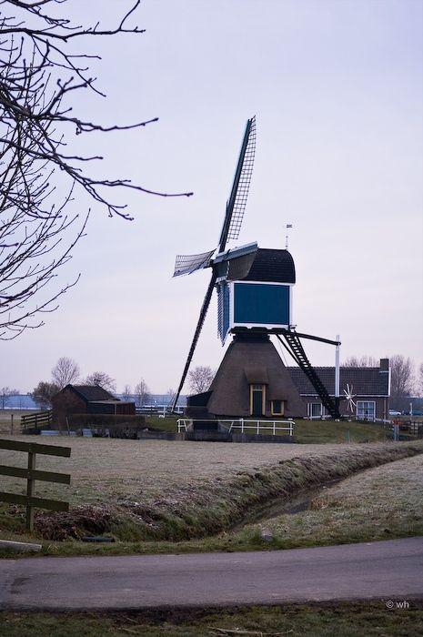 Grote Molen, Zoeterwoude-Rijndijk (Zuid-Holland)