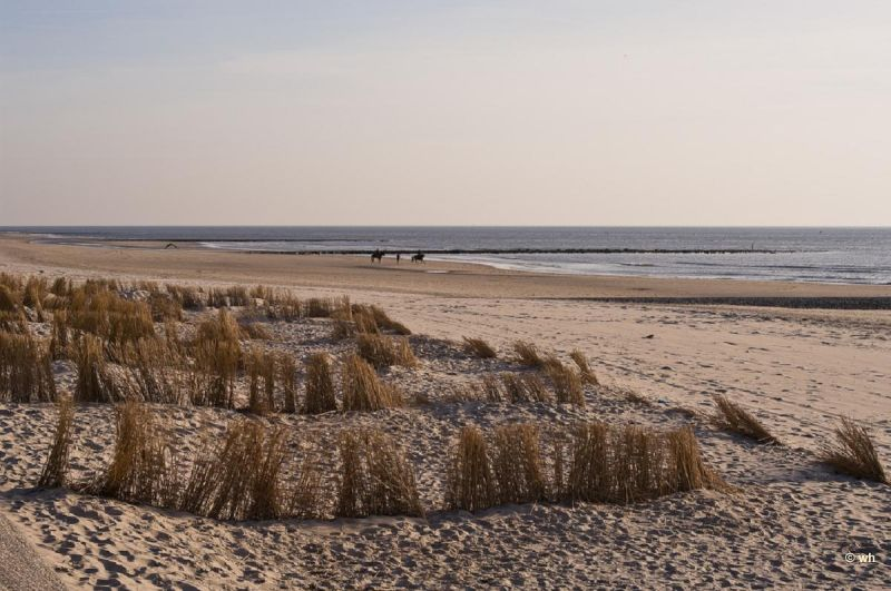 Camperduin (Noord-Holland)