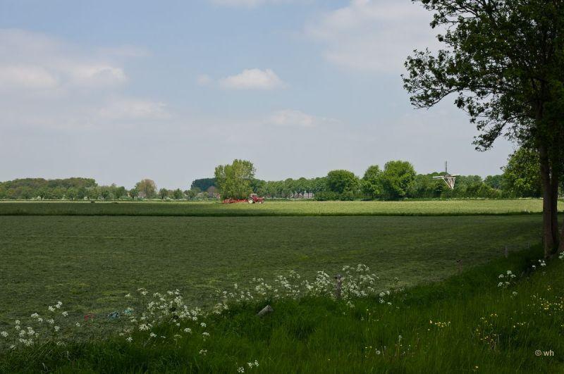 Steenderen  (Gelderland)