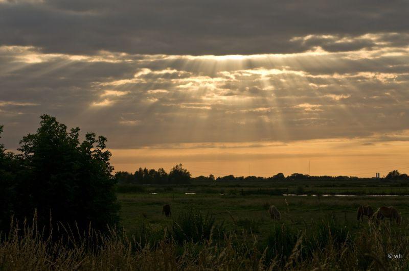 Eilandspolder  (Noord-Holland)