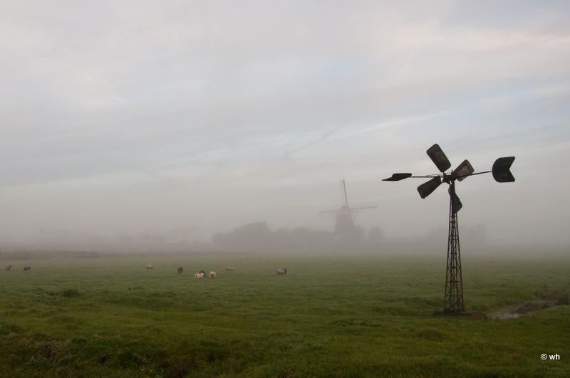 Oude Leede  (Zuid-Holland)