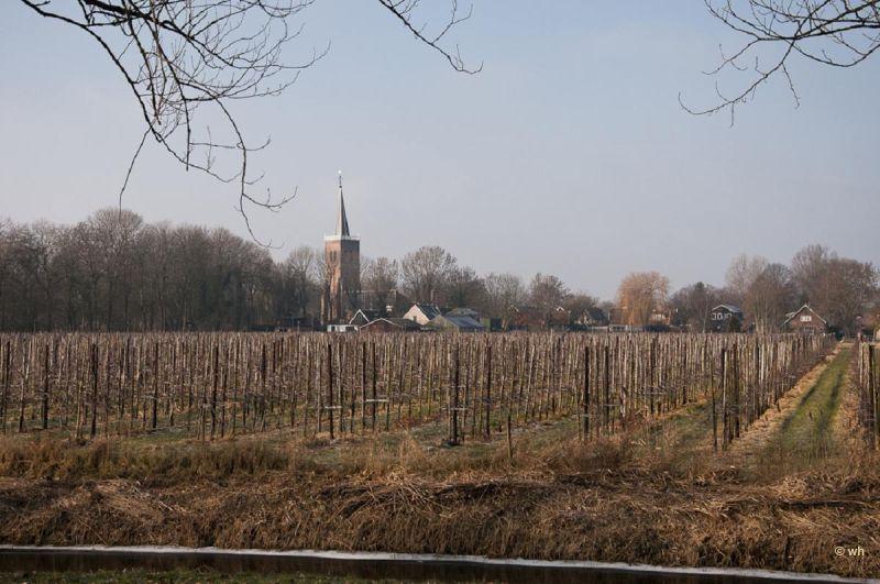 Nieuwe Niedorp (Noord-Holland)