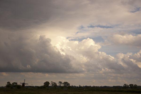 Ruige kade  (Zuid-Holland)