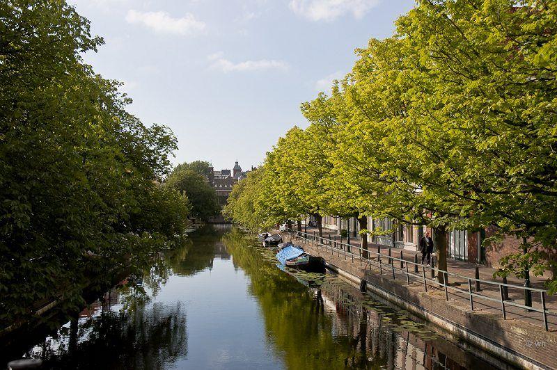 Den-Haag  (Zuid-Holland)