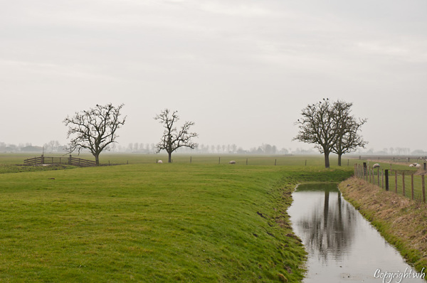 Benningbroek  (Noord-Holland)