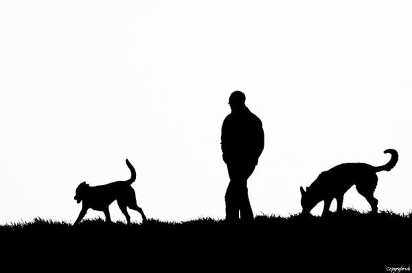 Man met honden