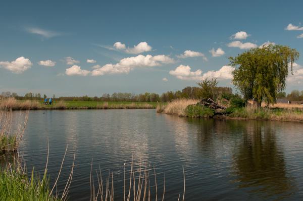 Polder Arkemheen  (Gelderland)