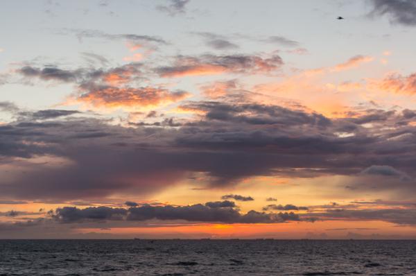 Bloemendaal aan zee  (Noord-Holland)