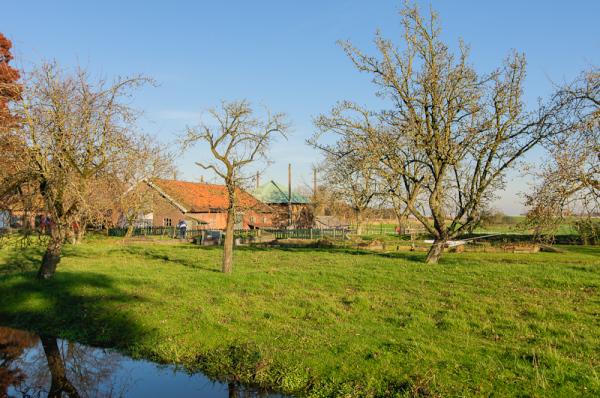Rijnsaterwoude  (Zuid-Holland)
