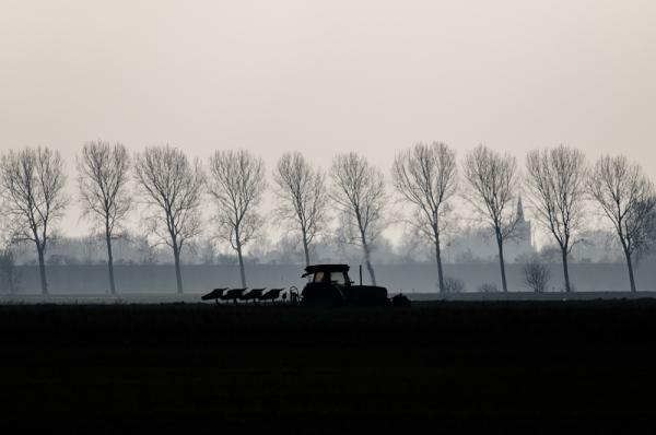 Wieringermeer (Noord-Holland)