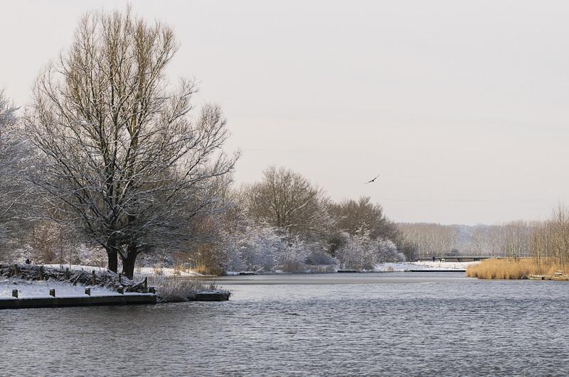 Geestmerambacht ,  Langedijk  (Noord-Holland)