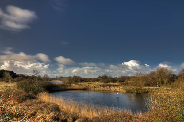 Amsterdamse waterleiding duinen  (Noord-Holland)