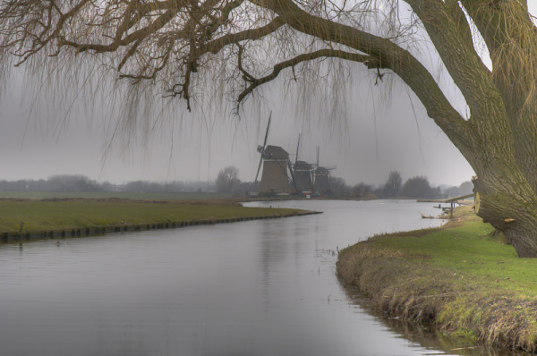 Driemanspolder  (Zuid-Holland)