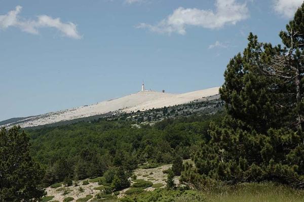 Mont Ventoux  (Vaucluse)  Frankrijk