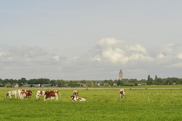 Eemnes (Utrecht)