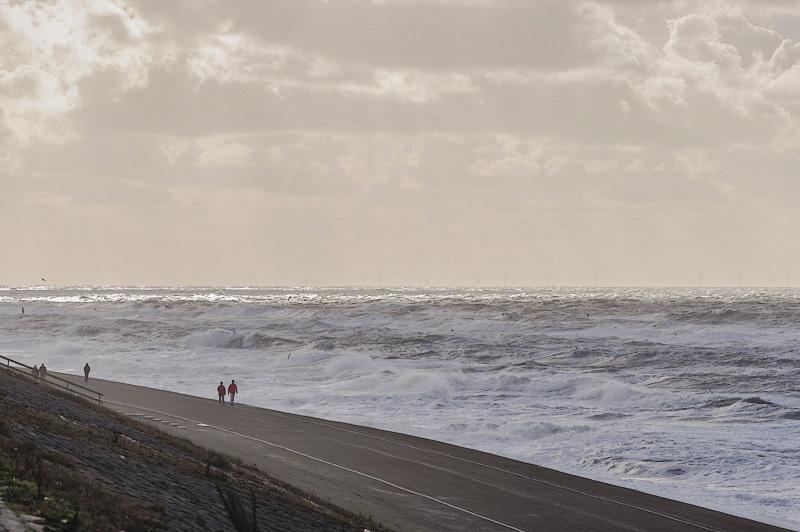 Noordzee bij Petten  (Noord-Holland)