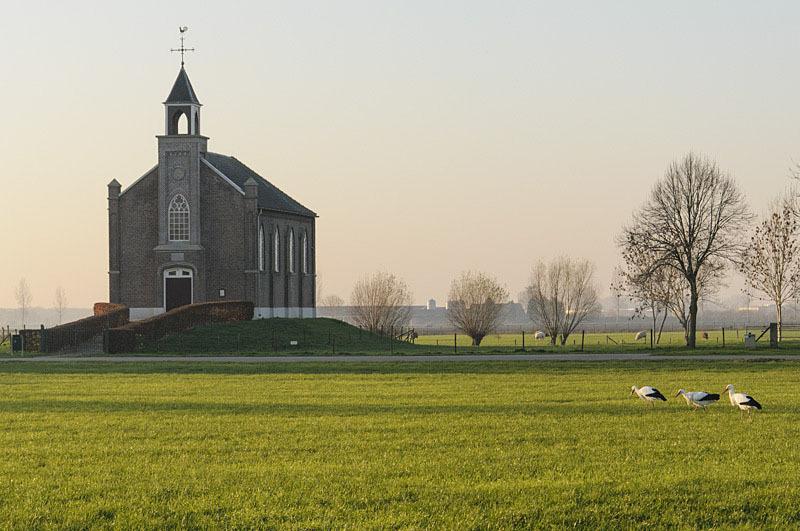 Homoet  (Gelderland)