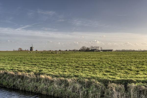 Berkmeer 11,9 graden boven nul   (Noord-Holland)