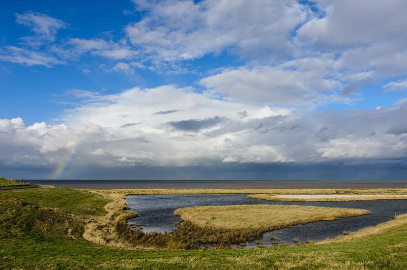 Wieringen / Waddenzee  (Noord-Holland)