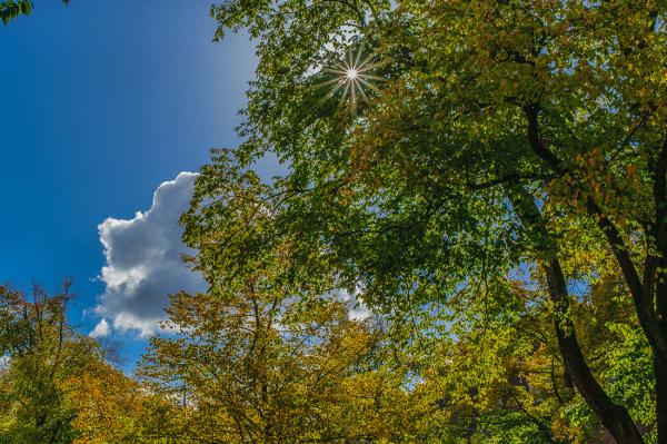Een mooie herfstdag - A beautiful autumn day
