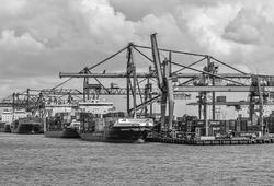 Seaport of Rotterdam