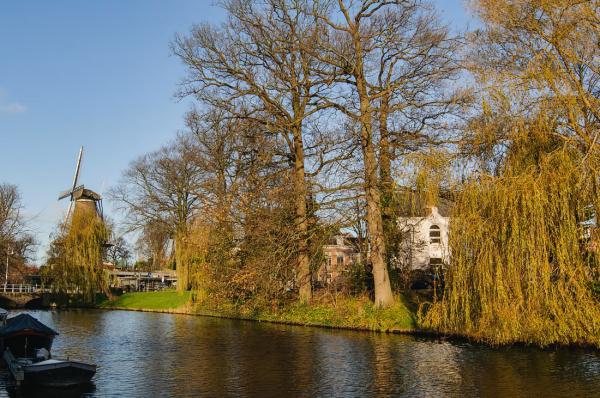 Nieuwlandersingel,  Molen van Piet,   Alkmaar