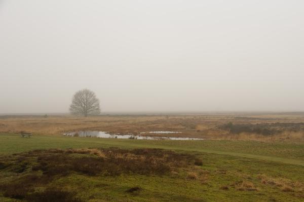 Molenveld,  provincie Drenthe
