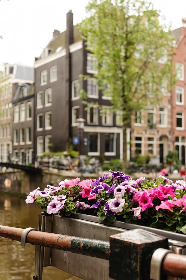 Hoek Brouwersgracht  / Herengracht,   Amsterdam