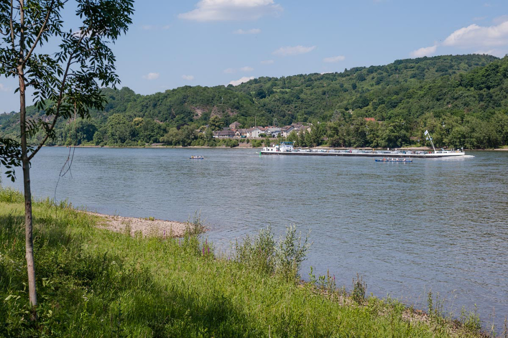 The Rhine near Bad Breisig (Germany)