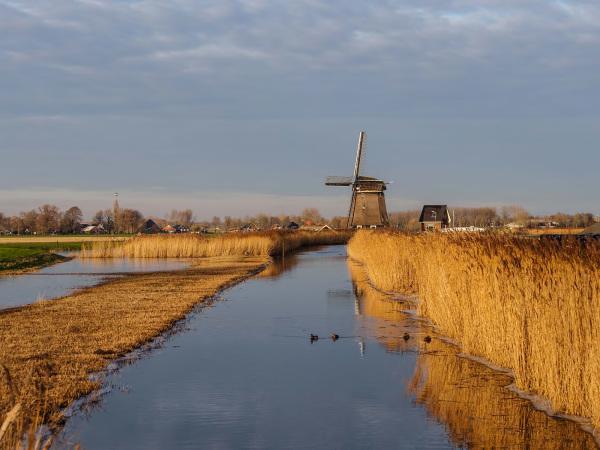 The Netherlands, Berkmeer polder