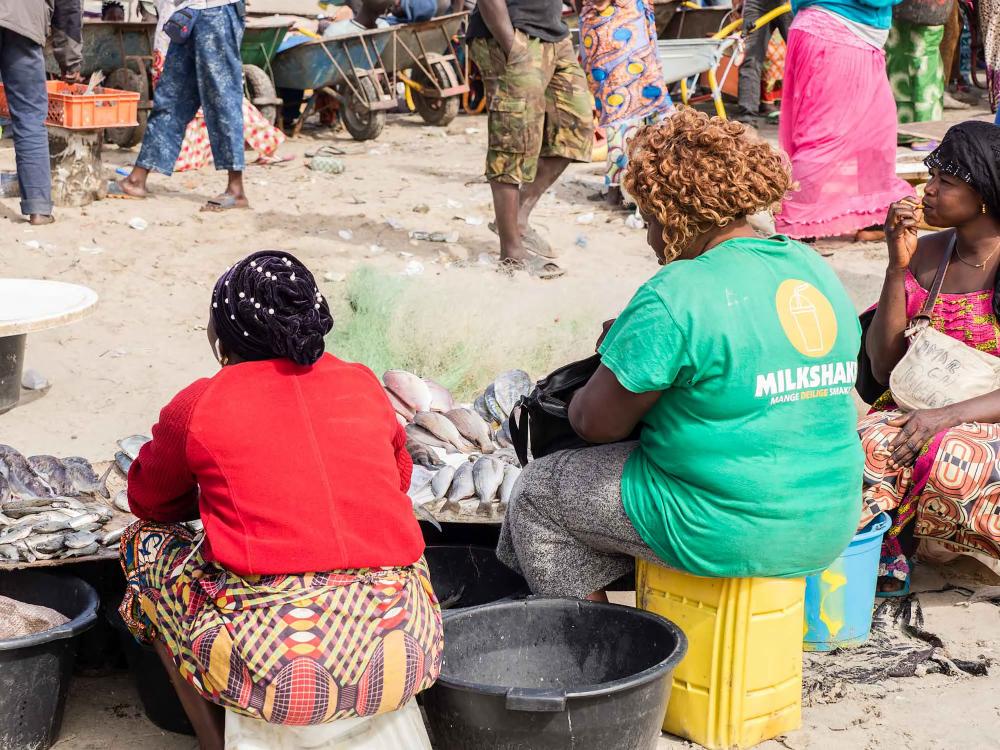 Gambia, Tanji, Fish Market 3/5